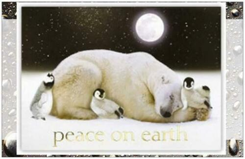 25 Christmas HOLIDAY Greeting POLAR BEAR Penguin LG Post Cards  PRINTED US CAN