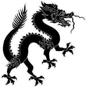 Chinesisch-Drachen-Kampfsport-T-Shirt-Transfer-Zum-Aufbuegeln-Gross-A4-Groesse