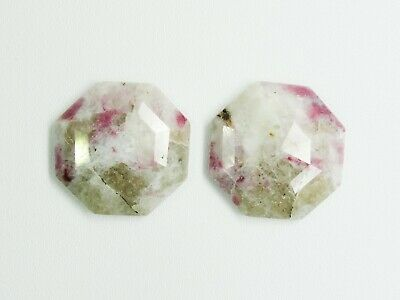 Octagon Shape Cabochon Faceted Pair Gemstone Natural Dendritic Opal Gemstone Loose Jewelry Gemstone Sale