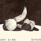 O T H E R [PA] by Any Kind (Vinyl, Mar-2015, Readymade)