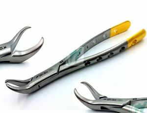 GOLD-HANDLE-AUTOCLAVABLE-COW-HORN-MOLAR-DENTAL-EXTRACTING-FORCEP-23