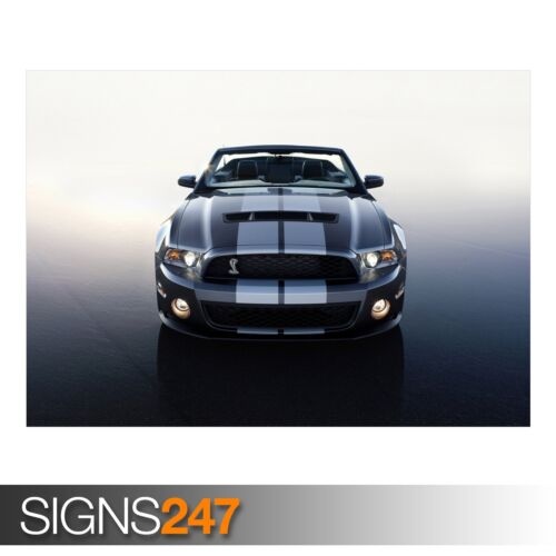CAR POSTER Poster Print Art A1 A2 A3 FORD MUSTANG SHELBY CONVERTIBLE AB544