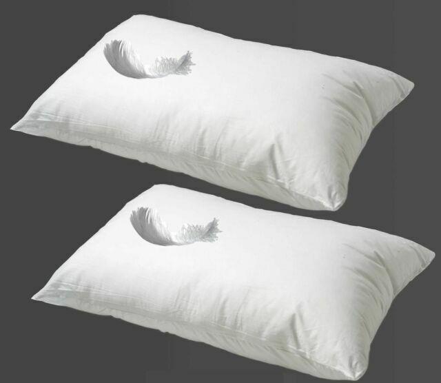 Firebox's four foot willy pillow flies