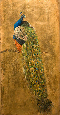 Excellent no framed canvas oil painting nice bird Peacock free shipping cost