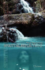 Spiritual Reflections Through Prayers of Poetry by Jim Severance (Paperback / softback, 2008)