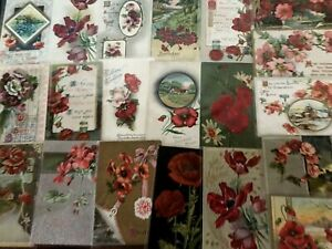 Colorful-Lot-of-25-POPPIES-VINTAGE-POPPY-FLOWERS-floral-GREETINGS-POSTCARDS-b480