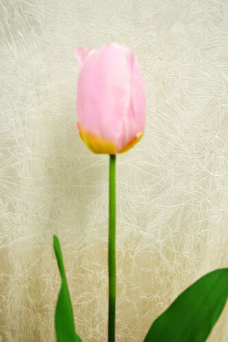 Tulpe rosa 60 cm  Kunstblumen Deko Kunstpflanze Seidenblumen