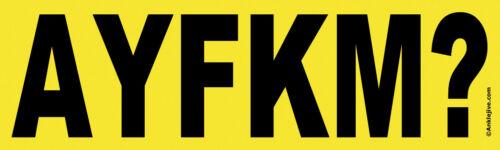 Anti-Trump UV-Coated Bumper Sticker Are You F*cking Kidding Me? AYFKM?