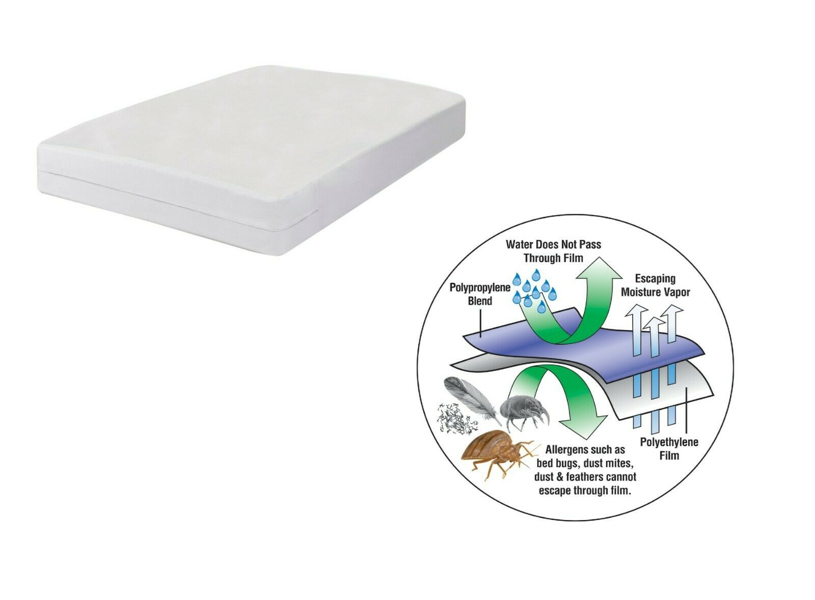 Bed Bug Blocker Hypoallergenic All In One Breathable Queen Mattress Cover For Sale Online Ebay