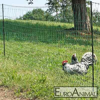 Geflügelzaun  2,50 x 31,40 m Masche 3 cm Hühnerzaun Geflügelnetz Küken