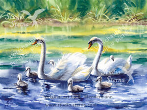 Kunst-Poster-Druck-matt-Aquarell-24x18cm-Gemaelde-Tiere-Voegel-Schwaene-Familie