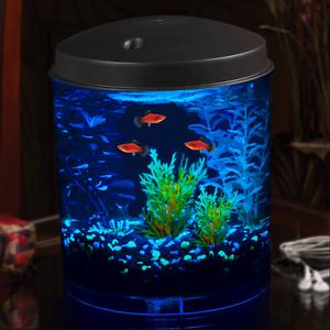 Tropical 2 Gallon Aquarium Fish Tank Kit W Color Selection Led