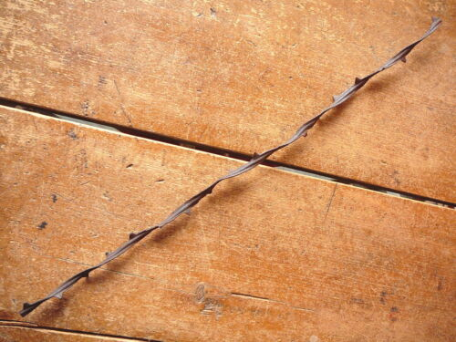ALLIS BUCKTHORN NARROW RUSTY TWISTED BARBED RIBBON ANTIQUE  BARBED WIRE