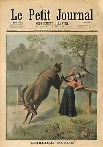 ACCIDENT-CHEVAL-DEMONGEOT-BELLE-SOEUR-Alexandre-Ribot-RIOZ-HAUTE-SAONE-1898