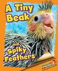 A Tiny Beak and Spiky Feathers (Cockatiel) by Ellen Lawrence (Hardback, 2015)