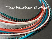Lot 15 Grizzly Feathers Hair Extensions long thin striped Real Turquoise CORAL