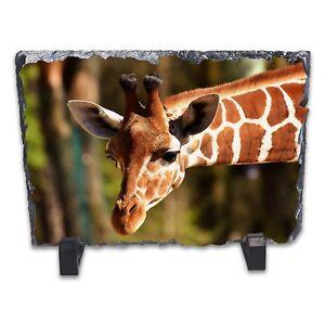 Giraffe-Rock-Slate-Photo-Frame-Rectangle