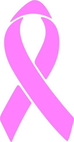 Pink Cancer Ribbon Vinyl Decal Sticker Laptop Car Window Wall Truck Wall