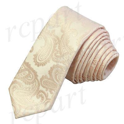 "New Men/'s Polyester Woven 2.5/"" skinny necktie only paisley Lavender formal"