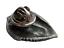 縮圖 2 - Trilobite Pewter Pin Badge