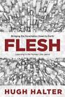 Flesh : Bringing the Incarnation down to Earth by Hugh Halter (2014, Paperback)