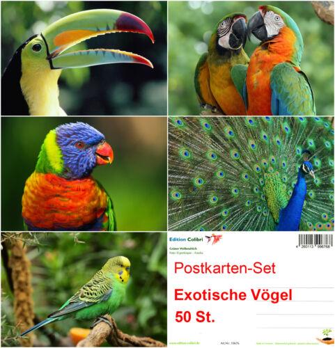 """/""""EXOTISCHE VÖGEL/"""" Postkarten-Set ideal für Postcrossing 50 St."""