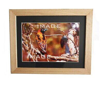 Framed Photographic Print Wooden Oak Frame Wall Art 14 X 11 Bird Ebay