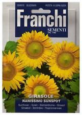 Semi/Seeds GIRASOLE Nanissimo Sunspot