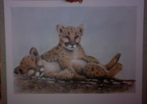 """cougar Kittens Popular Brand Sue Coleman Limited Edition Print """"catfight """" 125/ 450 W/ Mat"""
