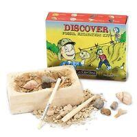 Fossil Excavation Dig Kit