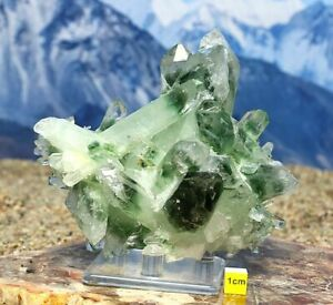 Rare Chlorite Quartz Crystal Cluster Himalayan -Natural Healing Raw Mineral 700g