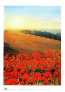 Poppy-Fields-in-Flanders-A4-decor-print-by-Peter-Hill-from-Cloud-Publishing