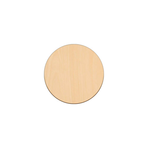 CIRCLE Shape Craft Blank Disc 16.5cm BIRCH Wood Decoration Embellishment Tag