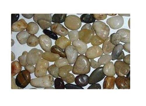 2.25Lb Flower Small Pebbles Assortment Natural Pebble Decorative Pebbles Exotic