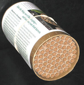 Mason-Bee-Nest-Kit