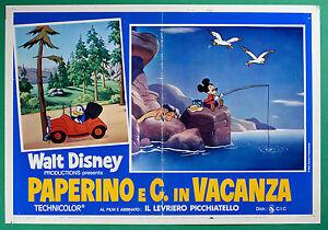 T29 Fotobusta Donald E C. IN Urlaub Walt Disney Animation Zeichentrickfilm 5