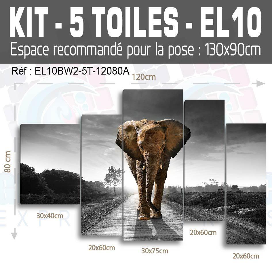120x80cm- Kit 5 TOILES IMPRIMEE TABLEAU TOILE DECO - ELEPHANT EL10BW2-5T1280A