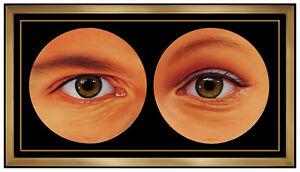 JIM-WARREN-Original-Oil-Painting-on-Canvas-Signed-Figurative-Surreal-Artwork-SBO