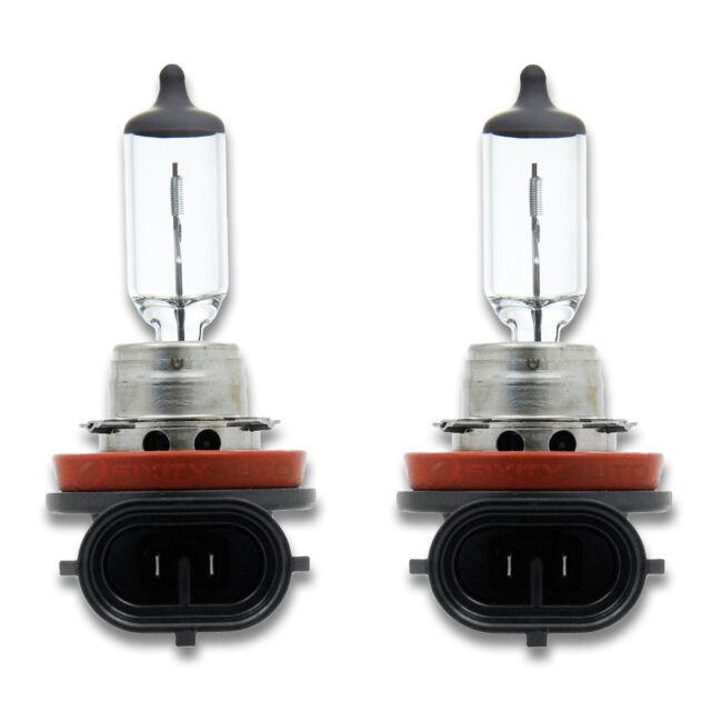 Philips 12342LLECOC1/Lamp Fog Lamp