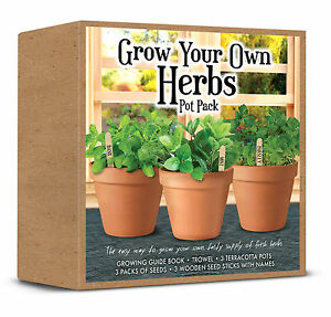 Image Is Loading Grow Your Own Herbs Pot Pack All You