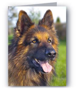 German shepherd greeting card dog alsatian ebay image is loading german shepherd greeting card dog alsatian m4hsunfo