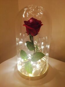 Beauty And The Beast Disney Enchanted Rose Dome Bell Jar Lamp Light