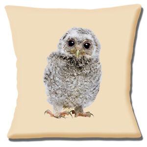 NEW CUTE GREY BABY FLUFFY OWL PHOTO PRINT ON CREAM 16 ...