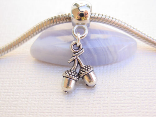Silver Tone Twins Acorns Nuts Best Friends Slider Euro Dangle Charm fit Bracelet