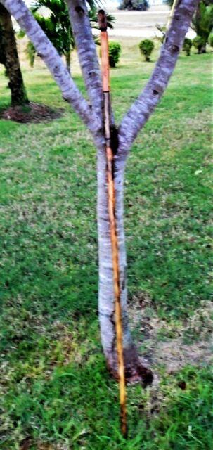 """60"""" Custom Handmade Walking Hiking Trekking Stick"""