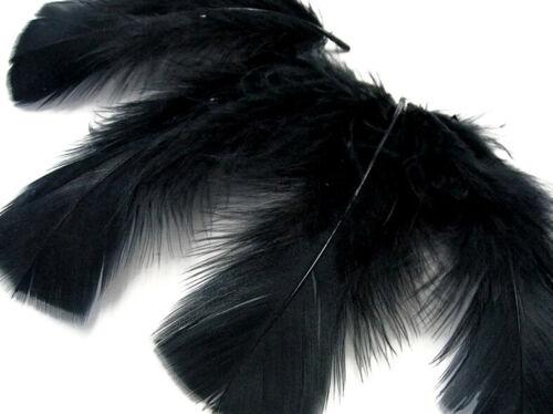 Fly Tying Suncatcher 1 Pack Black Turkey T-Base Plumage Feathers 0.50 Oz