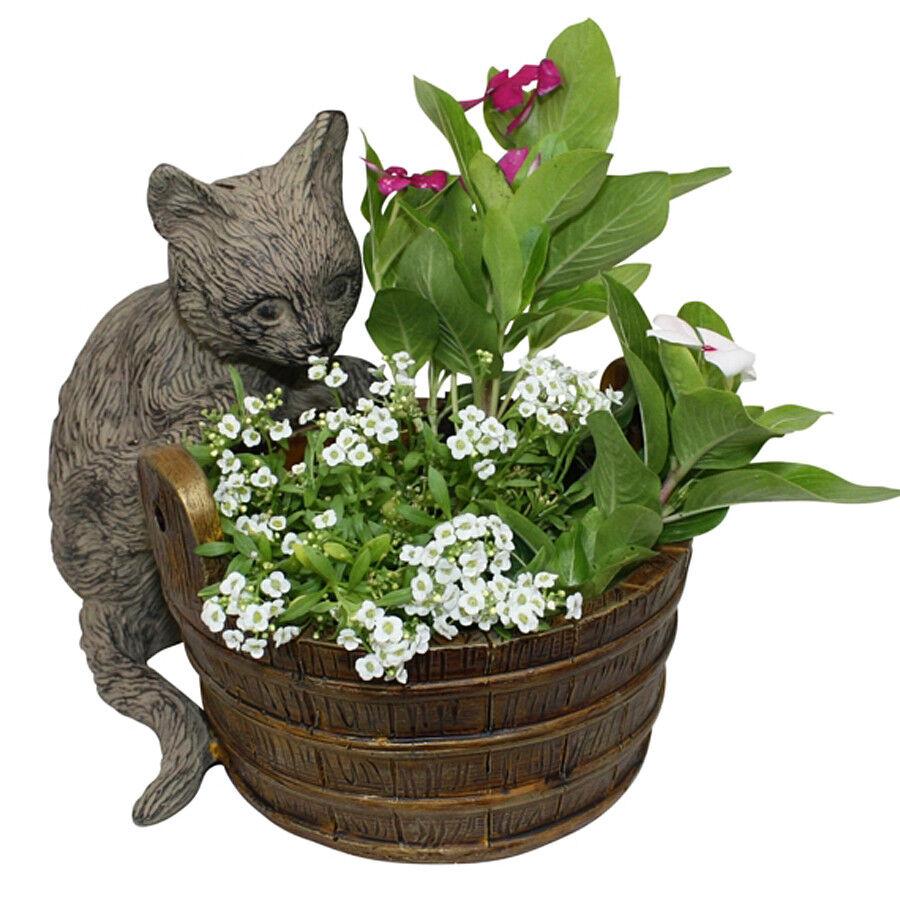 PLANTERS - CURIOUS CAT PLANTER - CAT CONTAINER