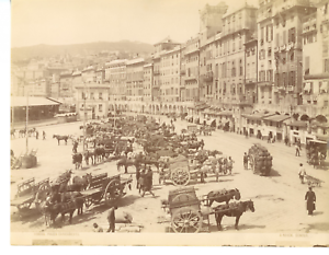 Noack-Italia-Genova-piazza-Caricamento-Vintage-albumen-print-Tirage-albumin
