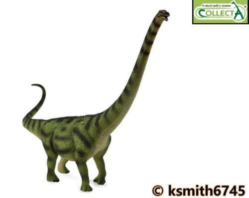 NOUVEAU * CollectA Daxiatitan solide Jouet en Plastique Dinosaure Prehistoric Animal