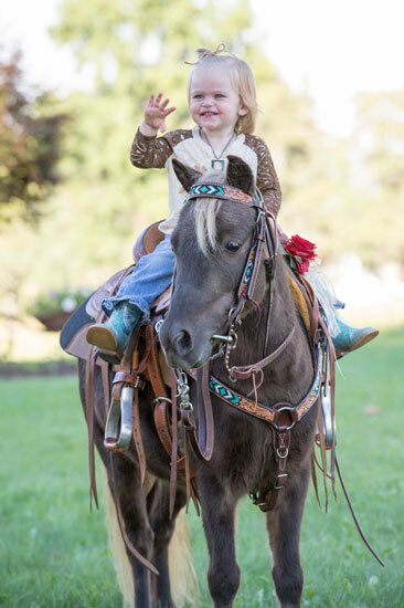 Turquoise Beaded Pony Headstall